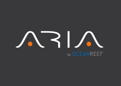 ARIA – The original nosebreathing snorkeling mask