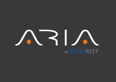 ARIA – The original nosebreathing snorkeling mask