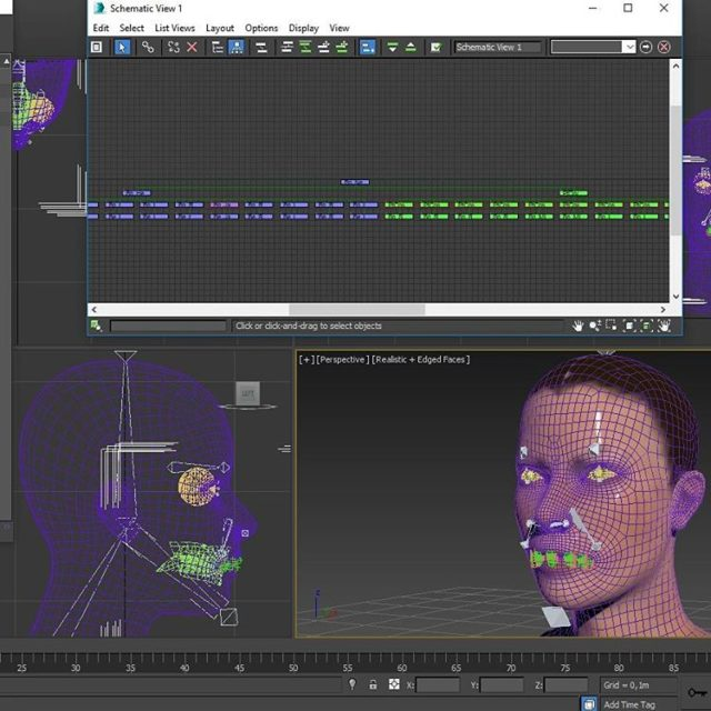 facerig rigging rig 3dsmax autodesk 3dstudio wonderlandproduction